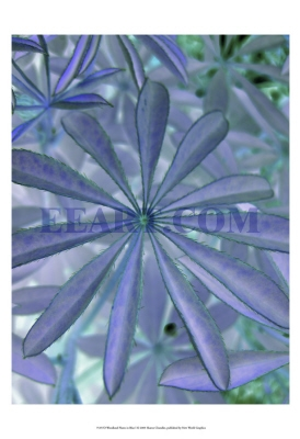 Woodland Plants in Blue I