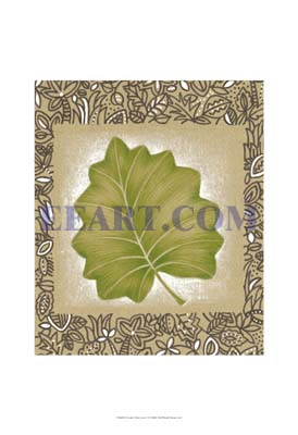 Exotic Palm Leaf I